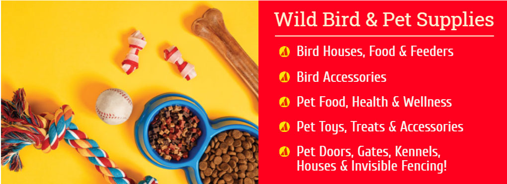 Proctor Ace - Department, Wild Bird Food And Pet Supplies