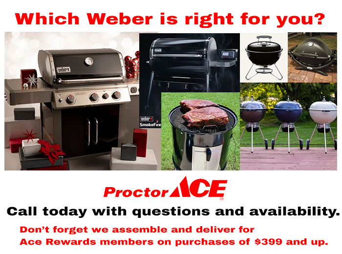 Which Weber is right for you jacksonville florida